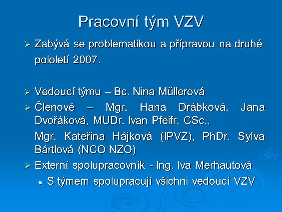 Aktivity týmu VZV  Pracovní jednání probíhají pravidelně měsíčně  Splněné úkoly Účast na seminářích MPSV Účast na seminářích MPSV Připomínky k projektovému dokumentu Připomínky k projektovému dokumentu Vypracování Projektových listů Vypracování Projektových listů Příprava pracovní schůzky s potenciálními partnery (duben 2007) Příprava pracovní schůzky s potenciálními partnery (duben 2007) Zpracování ankety zájmu o spolupráci na projektech Zpracování ankety zájmu o spolupráci na projektech