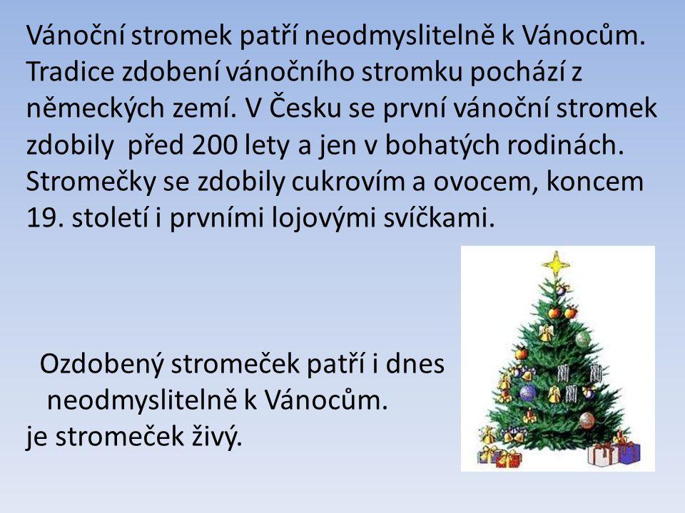 Vánoční stromek patří neodmyslitelně k Vánocům.
