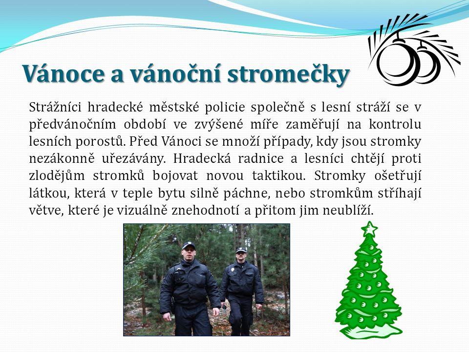 Vánoce a vánoční stromečky Strážníci hradecké městské policie společně s lesní stráží se v předvánočním období ve zvýšené míře zaměřují na kontrolu le