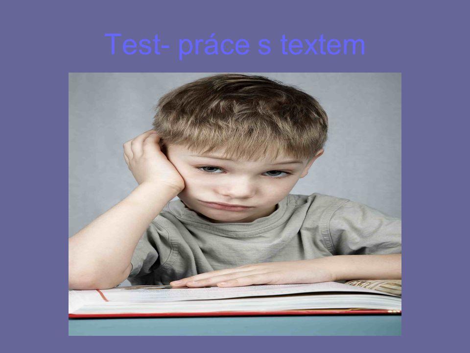 Test- práce s textem