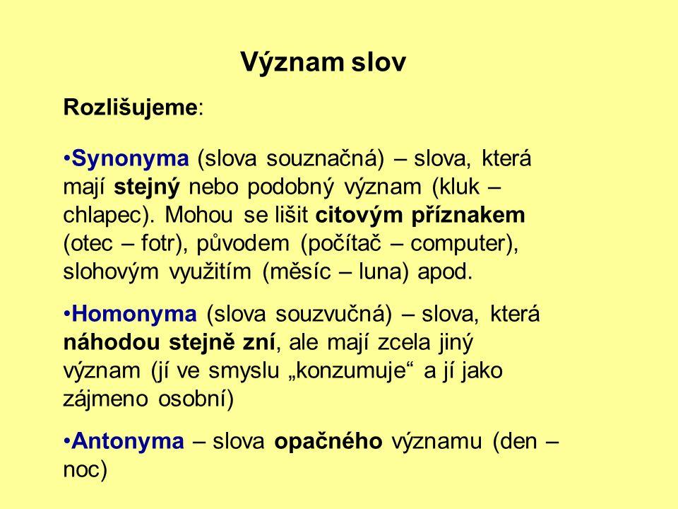 Význam slov Rozlišujeme: Synonyma (slova souznačná) – slova, která mají stejný nebo podobný význam (kluk – chlapec).