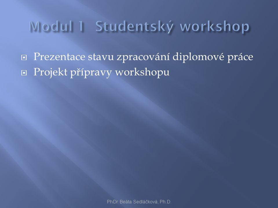  Prezentace stavu zpracování diplomové práce  Projekt přípravy workshopu PhDr. Beáta Sedláčková, Ph.D.