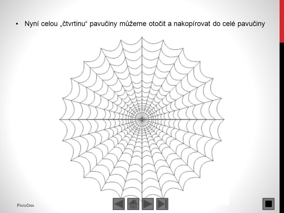 """Nyní celou """"čtvrtinu pavučiny můžeme otočit a nakopírovat do celé pavučiny P AVUČINA"""