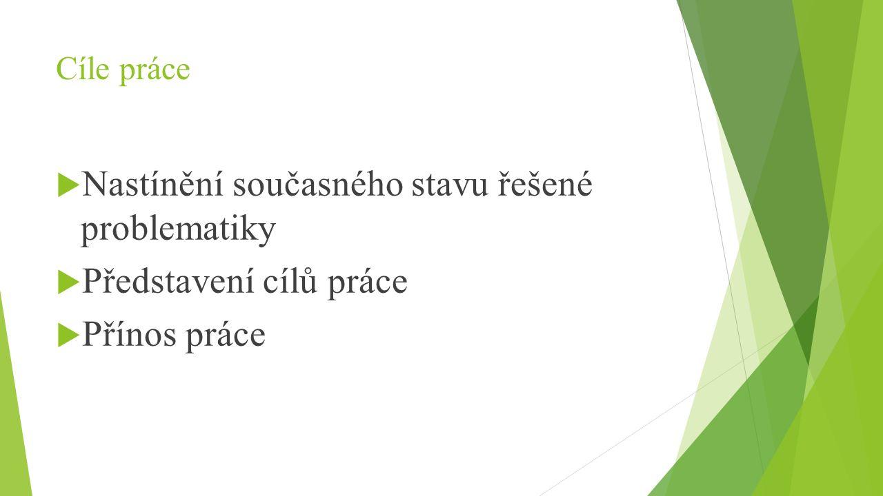 Cíle práce  Nastínění současného stavu řešené problematiky  Představení cílů práce  Přínos práce
