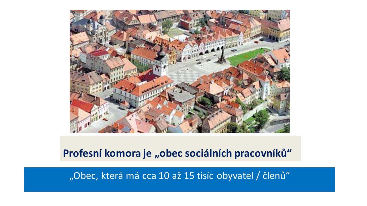 """Profesní komora je """"obec sociálních pracovníků """"Obec, která má cca 10 až 15 tisíc obyvatel / členů"""