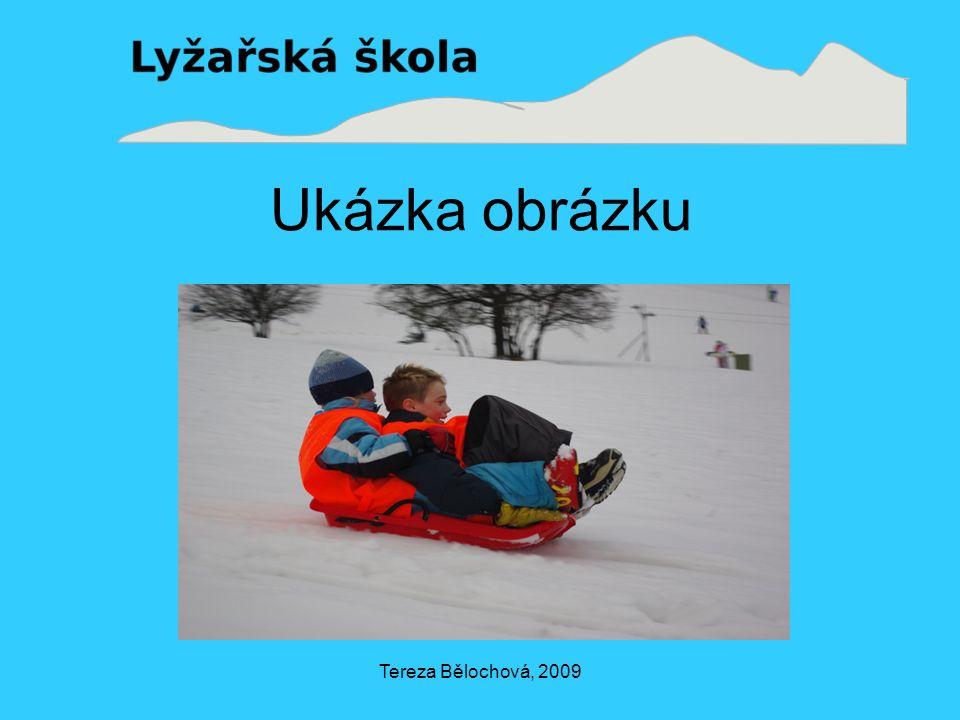 Tereza Bělochová, 2009 Ukázka obrázku
