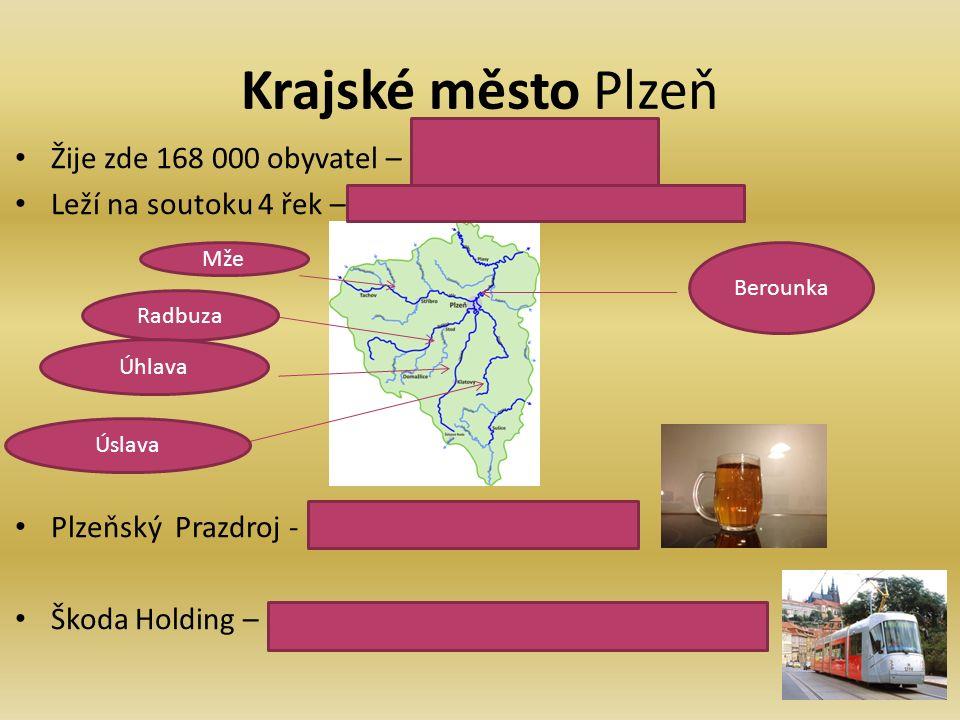 Krajské město Plzeň Žije zde 168 000 obyvatel – 68 000 obyvatel Leží na soutoku 4 řek – Mže, Radbuzy, Úhlavy, Úslavy Plzeňský Prazdroj - světoznámá výroba piva Škoda Holding – lodní šrouby, el.