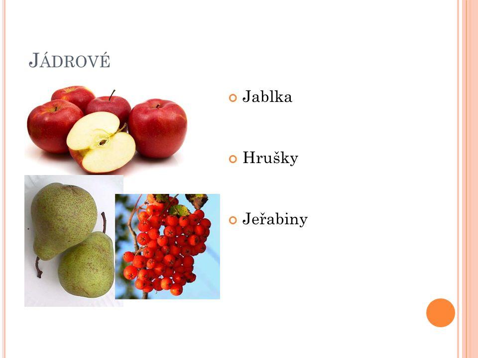 J ÁDROVÉ Jablka Hrušky Jeřabiny