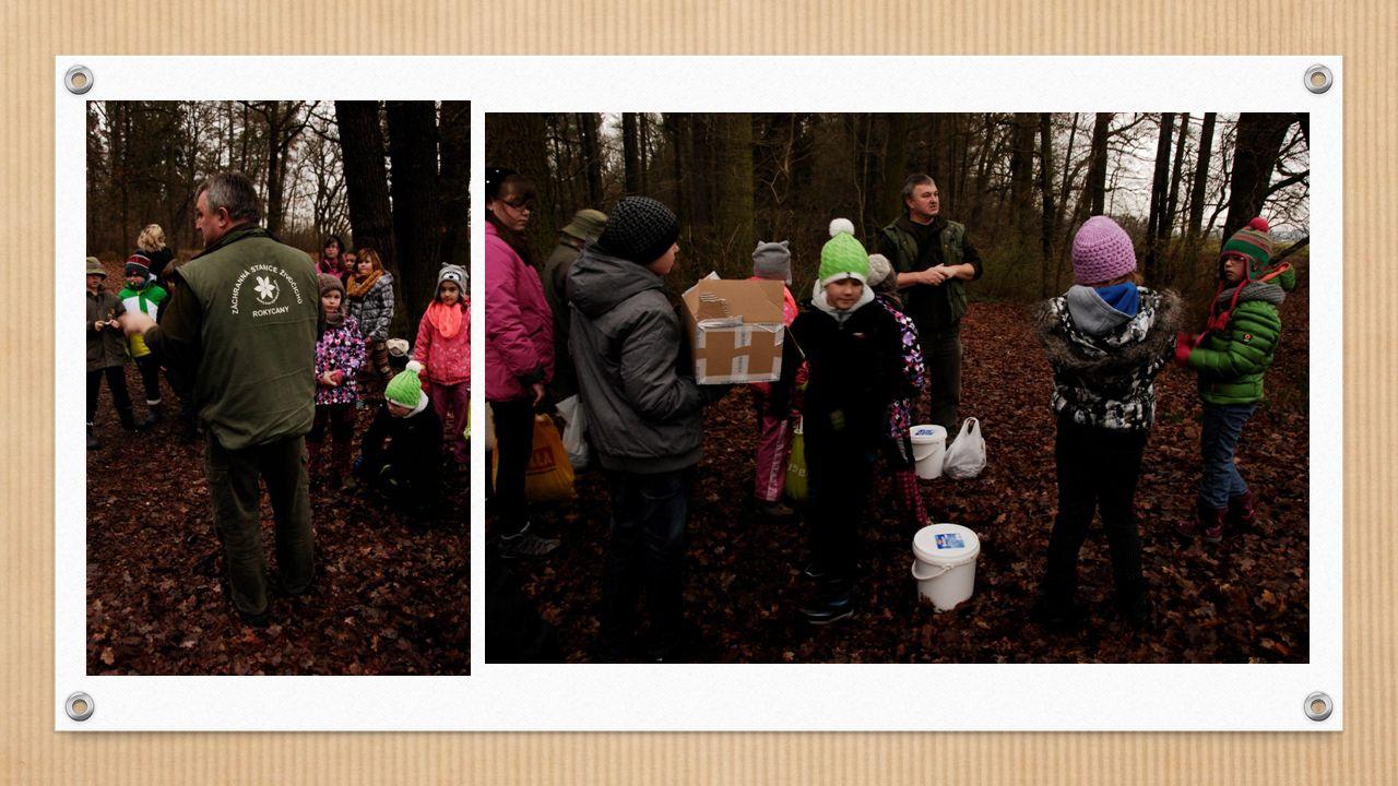 Po několika zastávkách jsme došli až ke krmelci na kraji lesa, kde jsme naložili vánoční dárky zvířátkům.