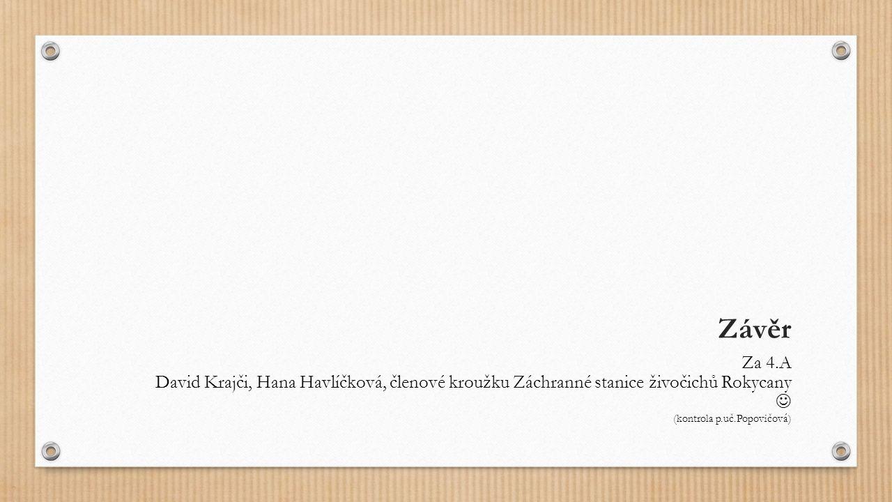 Závěr Za 4.A David Krajči, Hana Havlíčková, členové kroužku Záchranné stanice živočichů Rokycany (kontrola p.uč.Popovičová)