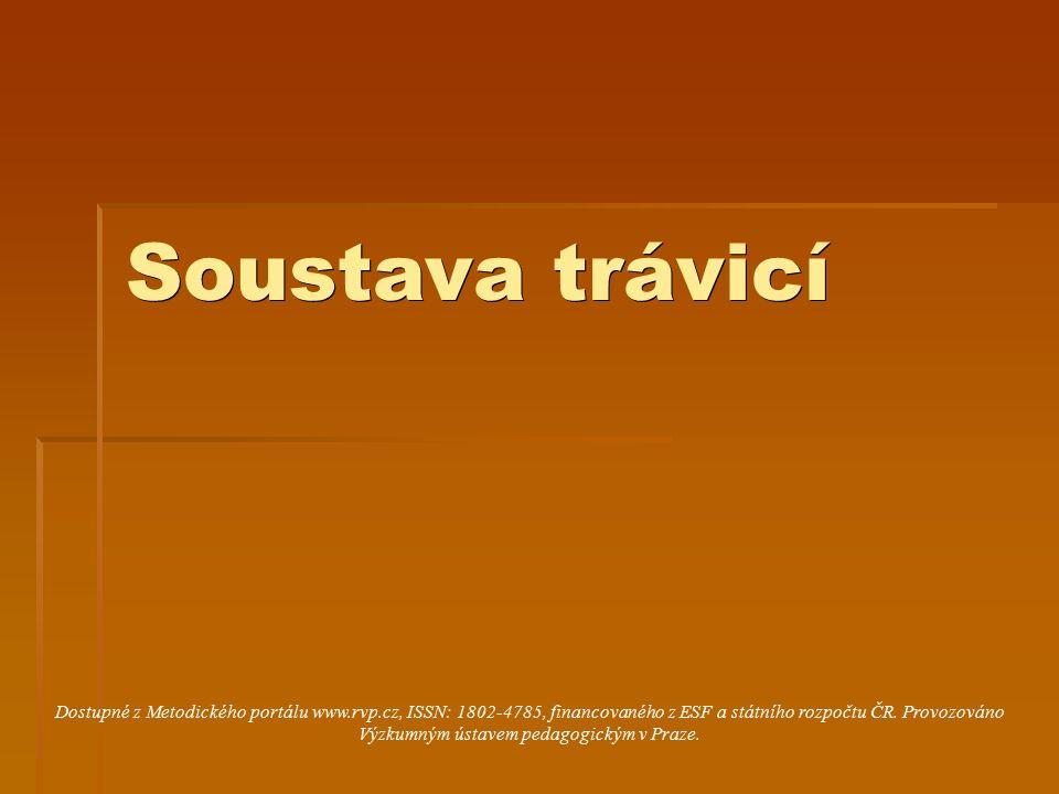 Soustava trávicí Dostupné z Metodického portálu www.rvp.cz, ISSN: 1802-4785, financovaného z ESF a státního rozpočtu ČR. Provozováno Výzkumným ústavem