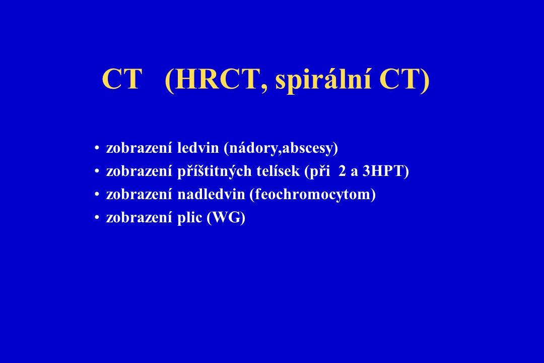 CT (HRCT, spirální CT) zobrazení ledvin (nádory,abscesy) zobrazení příštitných telísek (při 2 a 3HPT) zobrazení nadledvin (feochromocytom) zobrazení plic (WG)