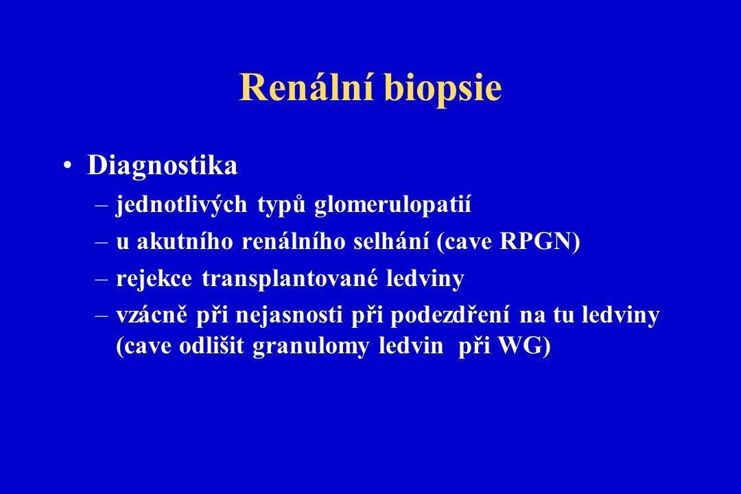 Renální biopsie Diagnostika –jednotlivých typů glomerulopatií –u akutního renálního selhání (cave RPGN) –rejekce transplantované ledviny –vzácně při nejasnosti při podezdření na tu ledviny (cave odlišit granulomy ledvin při WG)