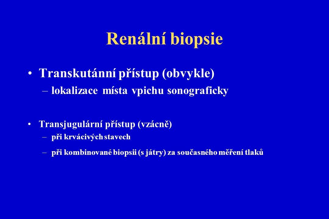 Renální biopsie Transkutánní přístup (obvykle) –lokalizace místa vpichu sonograficky Transjugulární přístup (vzácně) –při krvácivých stavech –při kombinované biopsii (s játry) za současného měření tlaků
