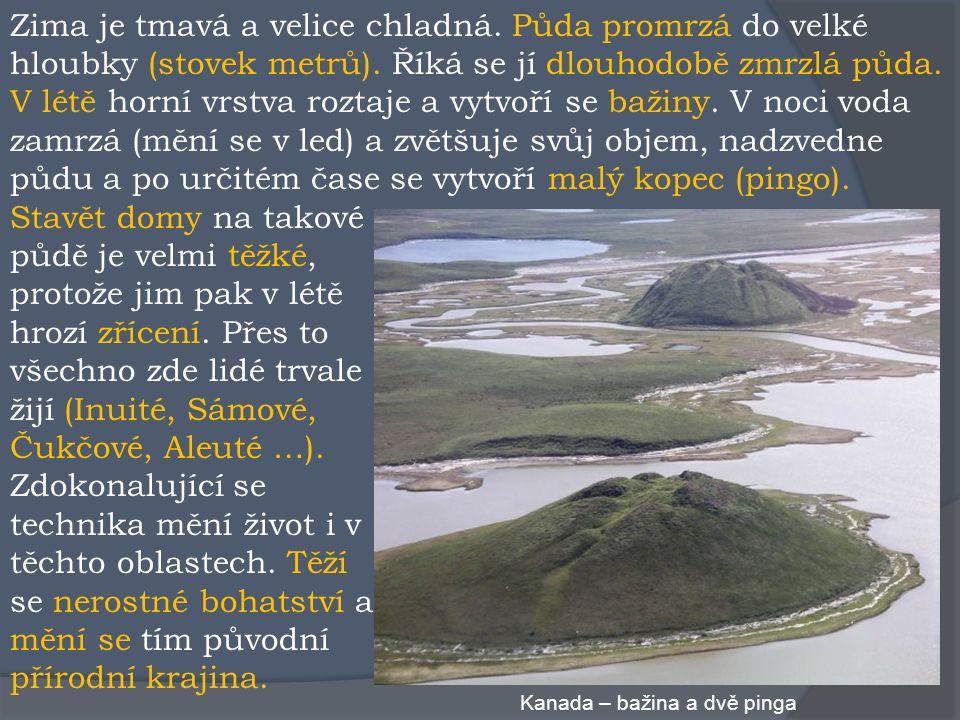Slovo tundra pochází z laponštiny a znamená bezlesou krajinu.