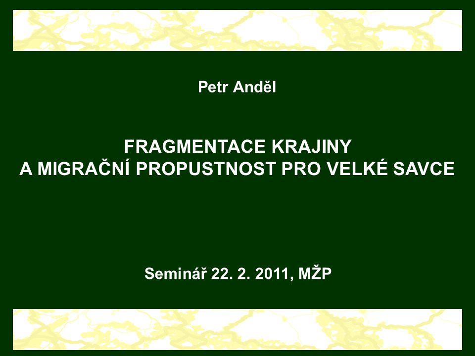 Petr Anděl FRAGMENTACE KRAJINY A MIGRAČNÍ PROPUSTNOST PRO VELKÉ SAVCE Seminář 22. 2. 2011, MŽP