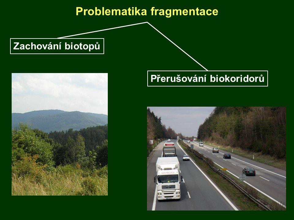 Problematika fragmentace Zachování biotopů Přerušování biokoridorů