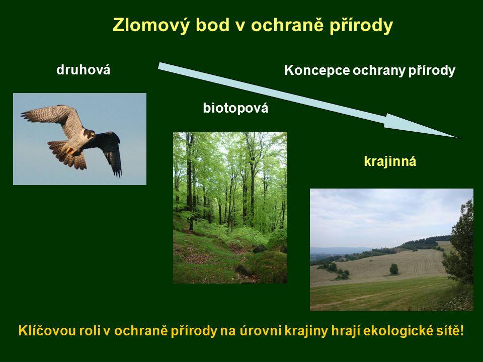 Vyhodnocení propustnosti krajiny Zlomový bod v ochraně přírody Klíčovou roli v ochraně přírody na úrovni krajiny hrají ekologické sítě! druhová biotop
