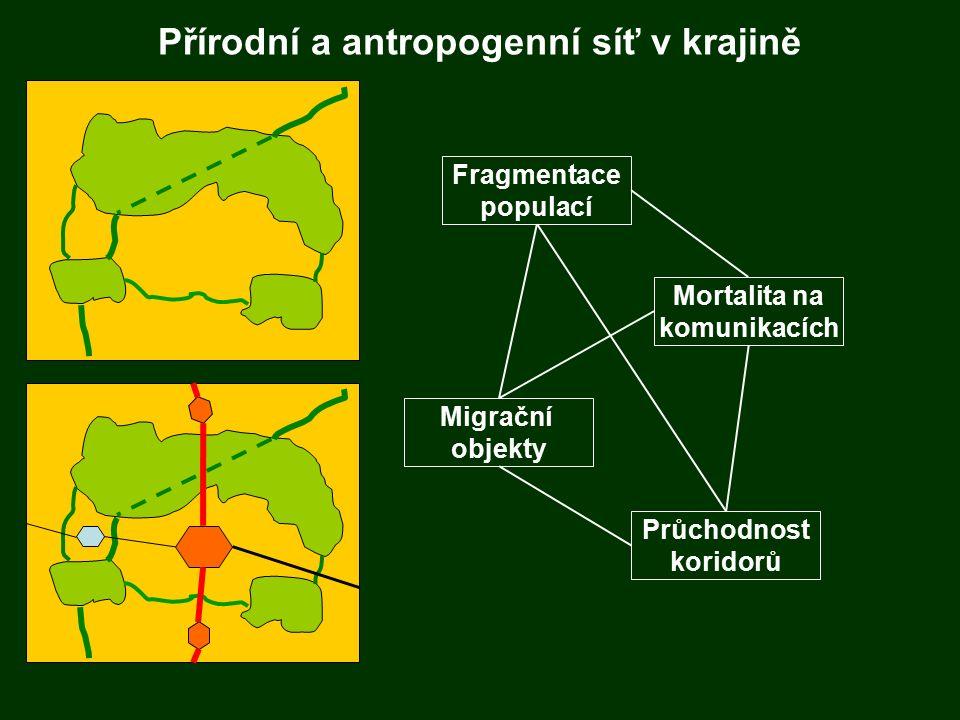 Fragmentace populací Fragmentace populací Migrační objekty Mortalita na komunikacích Průchodnost koridorů