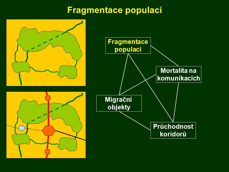 Vývoj fragmentace krajiny: 1980 - 2005 25 let pokles podílu nefragmentovaných oblastí: 84 → 63 % rozlohy ČR