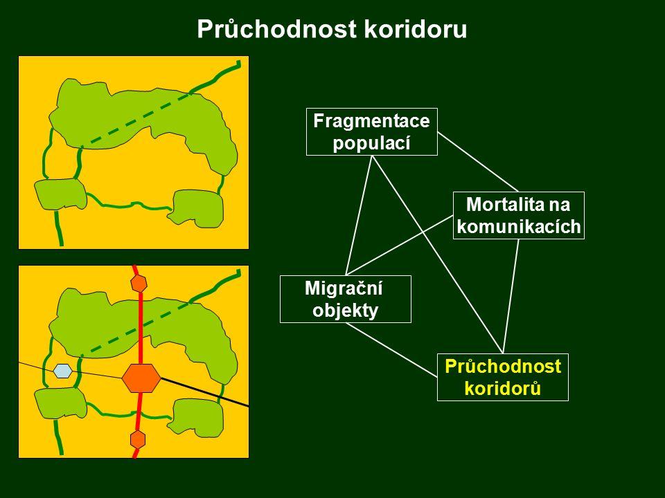 Průchodnost koridoru Fragmentace populací Migrační objekty Mortalita na komunikacích Průchodnost koridorů