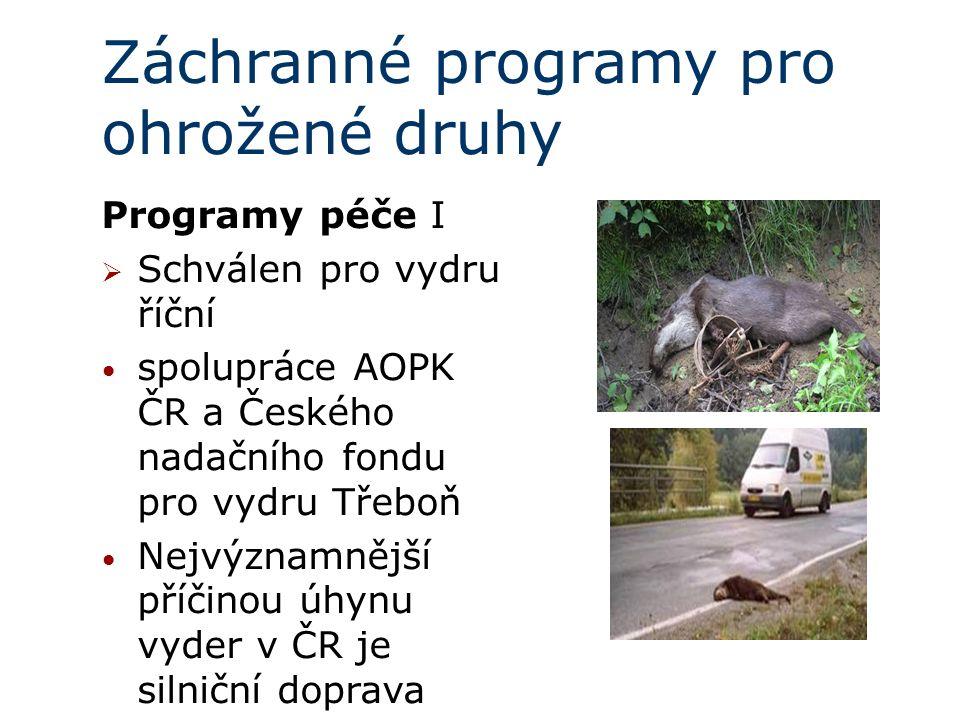 Záchranné programy pro ohrožené druhy Programy péče I  Schválen pro vydru říční spolupráce AOPK ČR a Českého nadačního fondu pro vydru Třeboň Nejvýznamnější příčinou úhynu vyder v ČR je silniční doprava