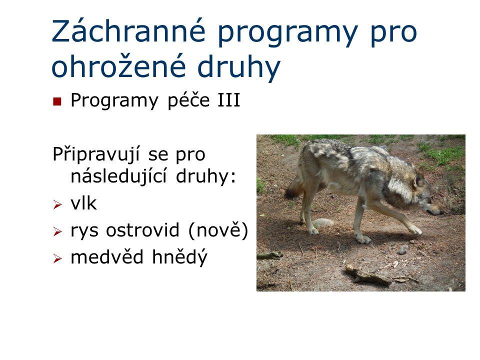 Záchranné programy pro ohrožené druhy Programy péče III Připravují se pro následující druhy:  vlk  rys ostrovid (nově)  medvěd hnědý