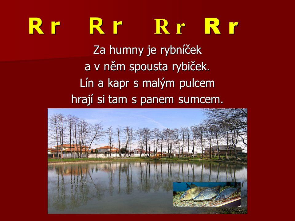 R r R r R r R r Za humny je rybníček a v něm spousta rybiček. Lín a kapr s malým pulcem hrají si tam s panem sumcem.