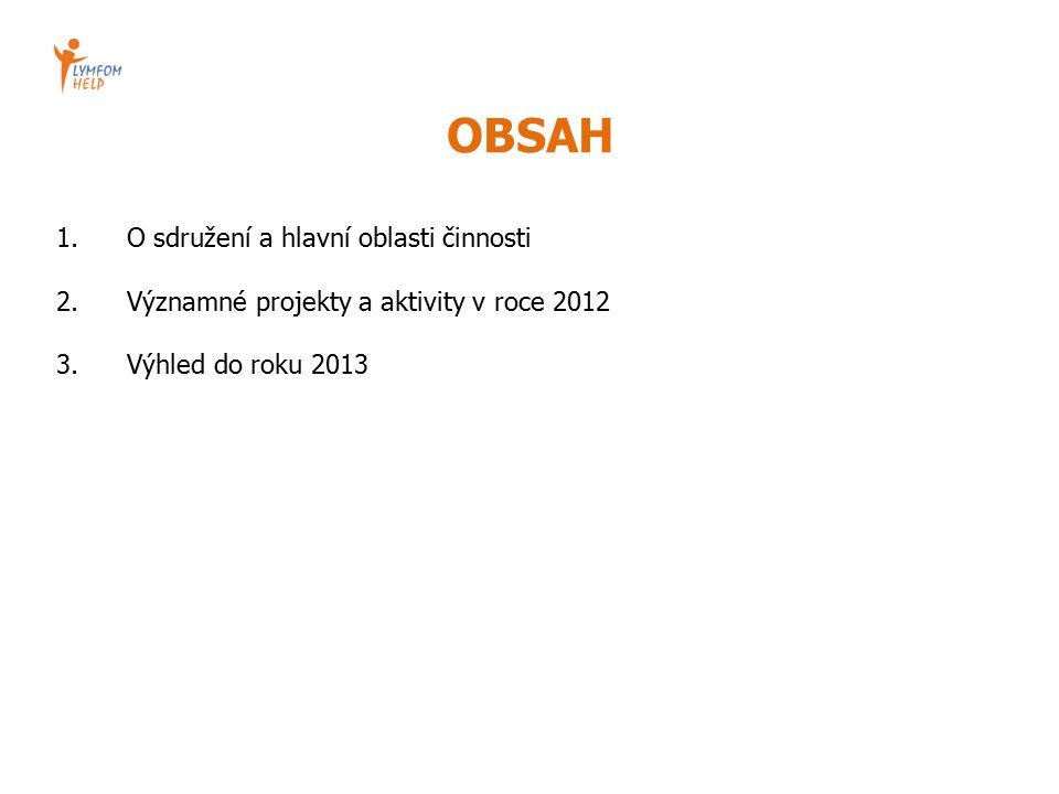 OBSAH 1.O sdružení a hlavní oblasti činnosti 2.Významné projekty a aktivity v roce 2012 3.Výhled do roku 2013