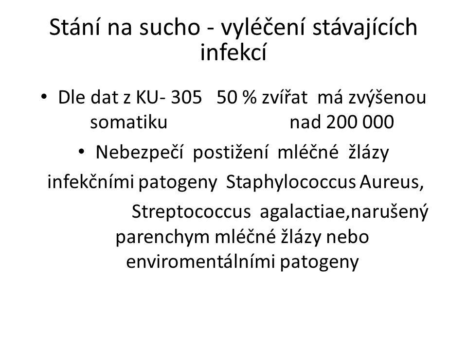 Stání na sucho - vyléčení stávajících infekcí Dle dat z KU- 305 50 % zvířat má zvýšenou somatiku nad 200 000 Nebezpečí postižení mléčné žlázy infekčními patogeny Staphylococcus Aureus, Streptococcus agalactiae,narušený parenchym mléčné žlázy nebo enviromentálními patogeny