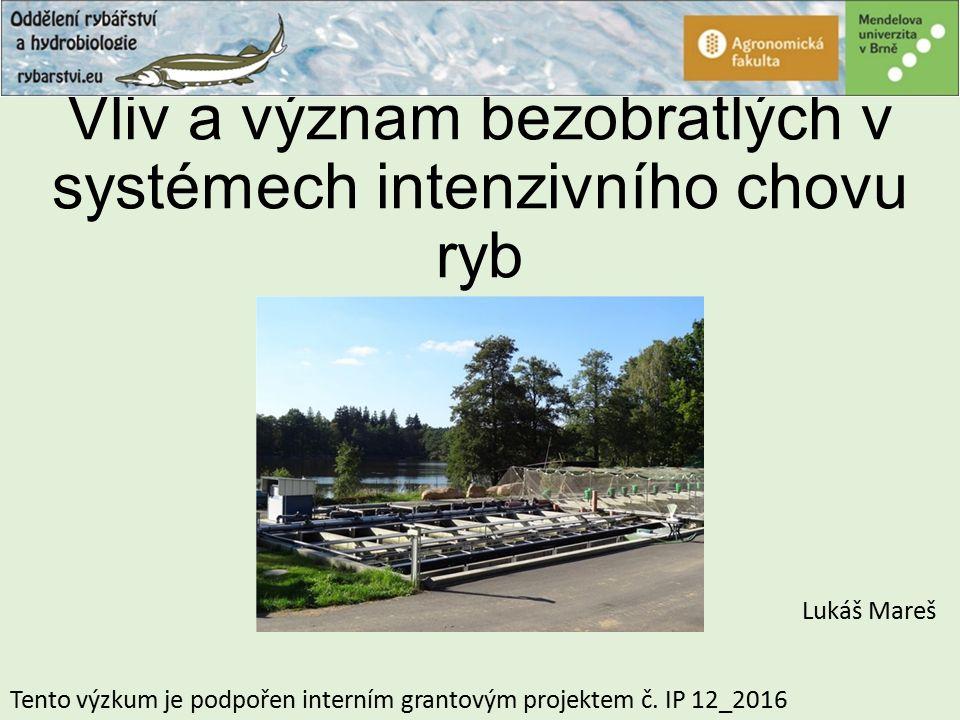 Vliv a význam bezobratlých v systémech intenzivního chovu ryb Lukáš Mareš Tento výzkum je podpořen interním grantovým projektem č. IP 12_2016