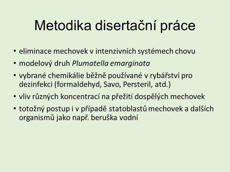 Metodika disertační práce eliminace mechovek v intenzivních systémech chovu modelový druh Plumatella emarginata vybrané chemikálie běžně používané v rybářství pro dezinfekci (formaldehyd, Savo, Persteril, atd.) vliv různých koncentrací na přežití dospělých mechovek totožný postup i v případě statoblastů mechovek a dalších organismů jako např.