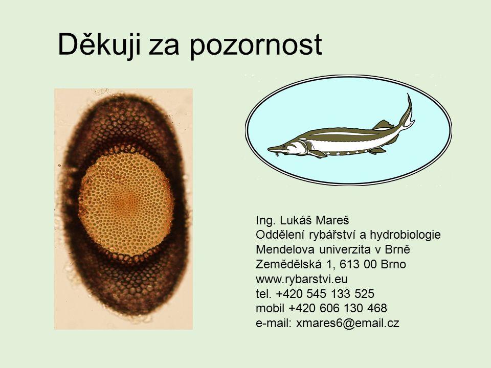 Děkuji za pozornost Ing. Lukáš Mareš Oddělení rybářství a hydrobiologie Mendelova univerzita v Brně Zemědělská 1, 613 00 Brno www.rybarstvi.eu tel. +4