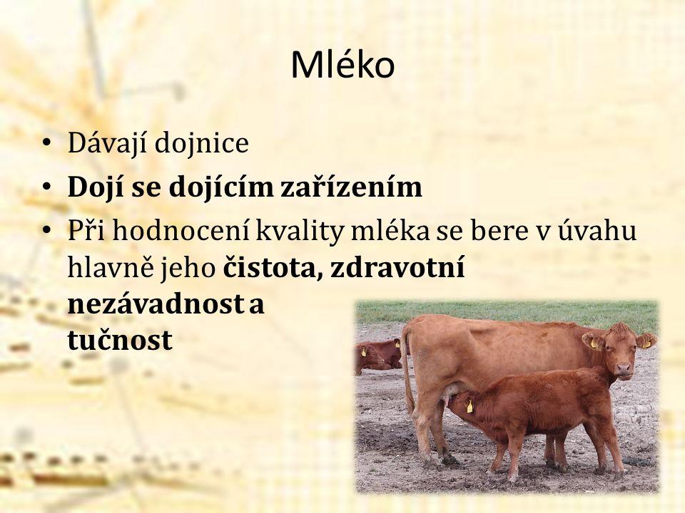 Mléko Dávají dojnice Dojí se dojícím zařízením Při hodnocení kvality mléka se bere v úvahu hlavně jeho čistota, zdravotní nezávadnost a tučnost