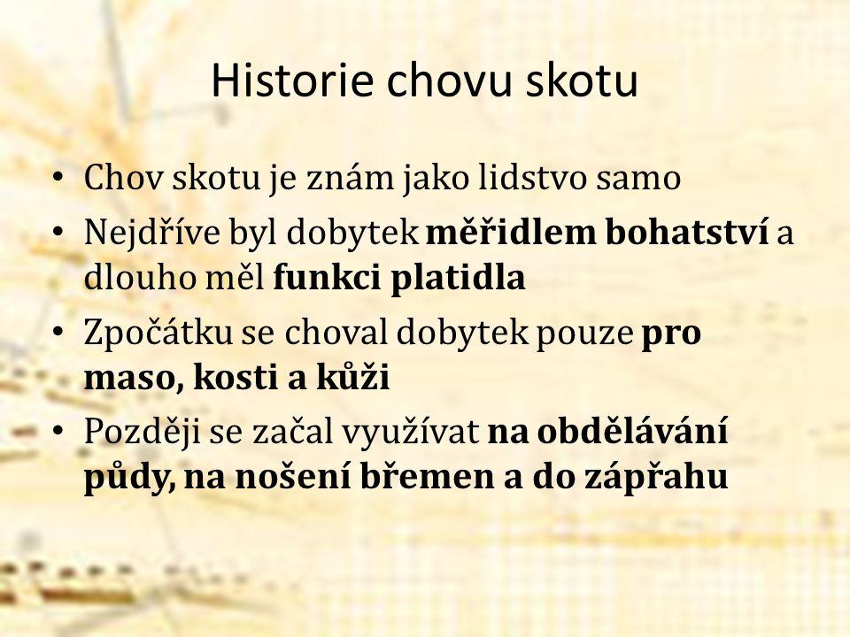 Historie chovu skotu Chov skotu je znám jako lidstvo samo Nejdříve byl dobytek měřidlem bohatství a dlouho měl funkci platidla Zpočátku se choval doby