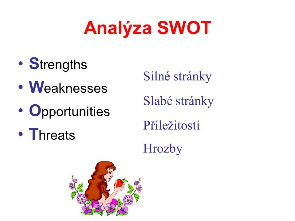 Přehledné zpracování dosavadní historie, významných milníků a poučení Vyhodnocení prostředí, trendů a vlivů SWOT analýza Stanovení cílů Formulace strategické vize a hlavního účelu Hlavní cíle a způsoby jejich měření Definice strategií k jejich dosažení a priorit Analýza