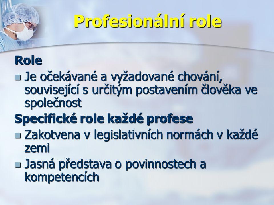 Profesionální role Role Je očekávané a vyžadované chování, související s určitým postavením člověka ve společnost Je očekávané a vyžadované chování, související s určitým postavením člověka ve společnost Specifické role každé profese Zakotvena v legislativních normách v každé zemi Zakotvena v legislativních normách v každé zemi Jasná představa o povinnostech a kompetencích Jasná představa o povinnostech a kompetencích