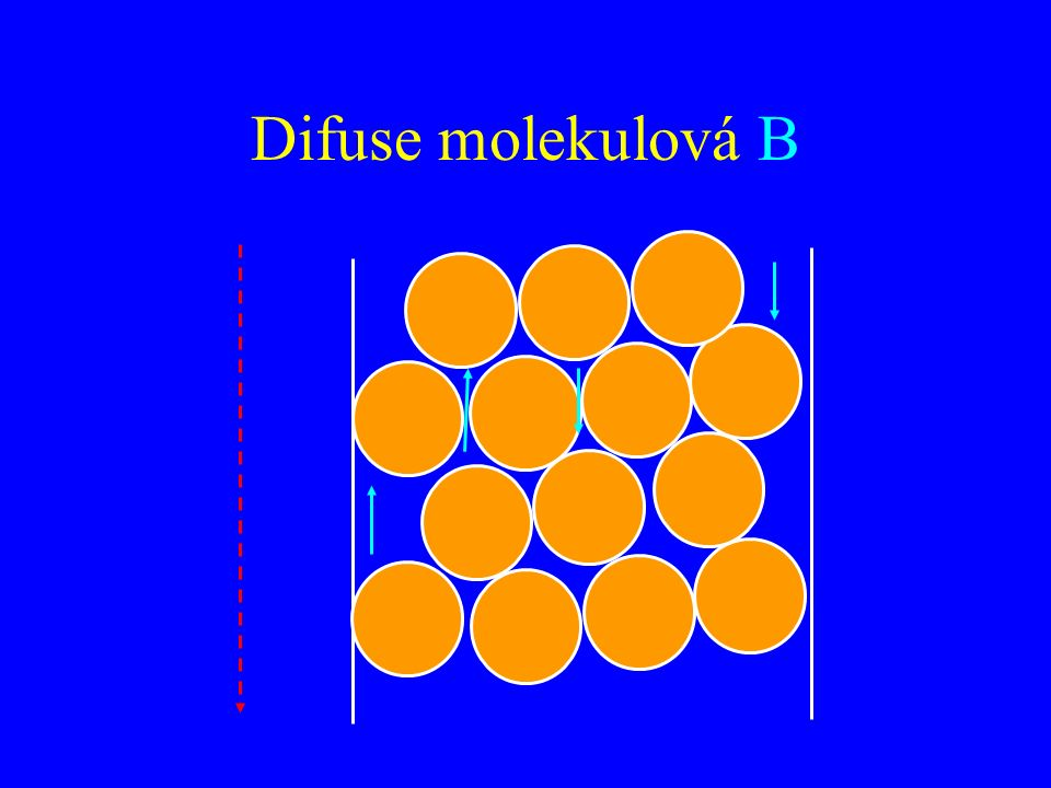 Difuse molekulová B