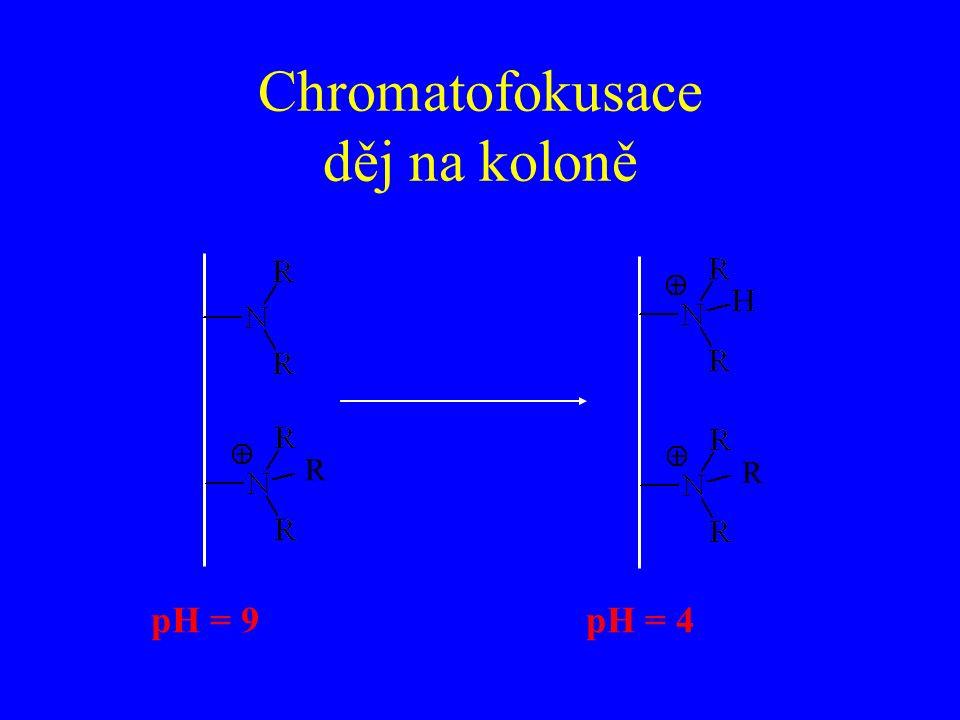 Chromatofokusace děj na koloně pH = 9pH = 4 R R