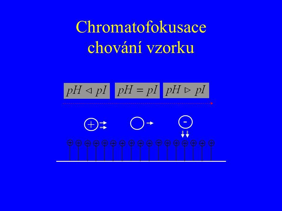 Chromatofokusace chování vzorku - +
