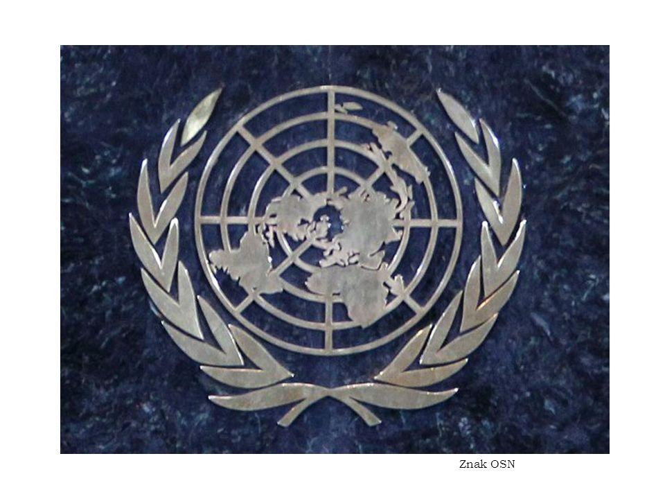 Znak OSN