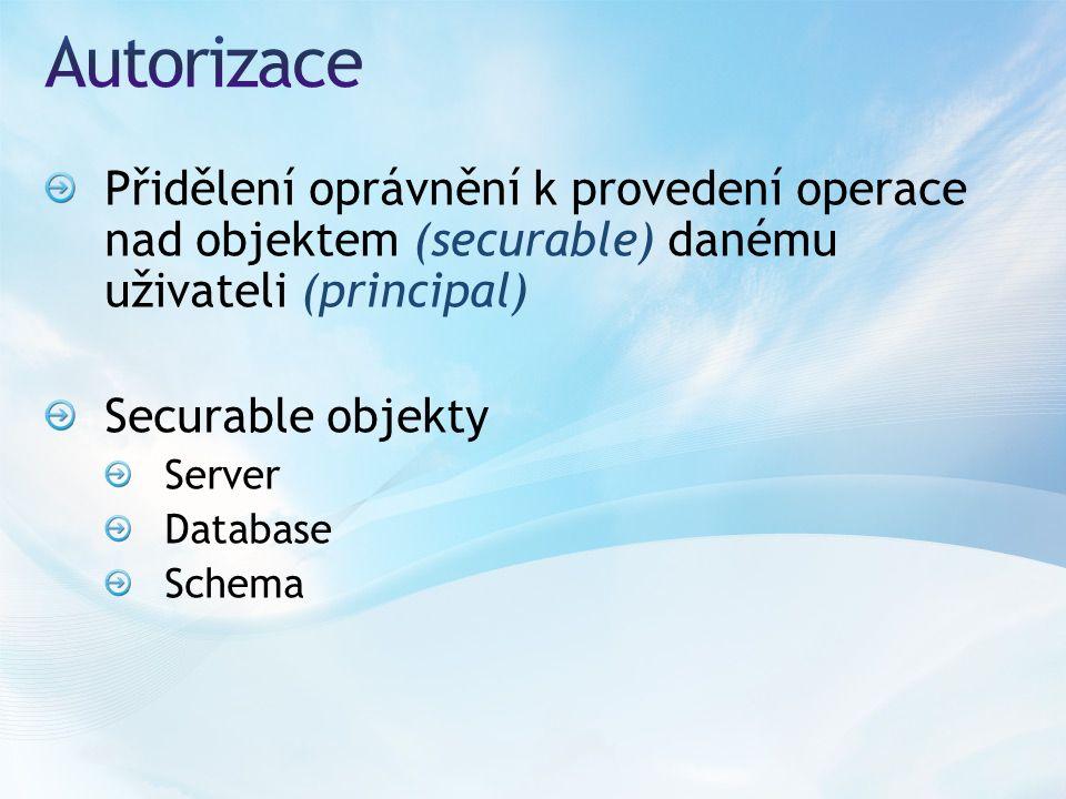 Přidělení oprávnění k provedení operace nad objektem (securable) danému uživateli (principal) Securable objekty Server Database Schema
