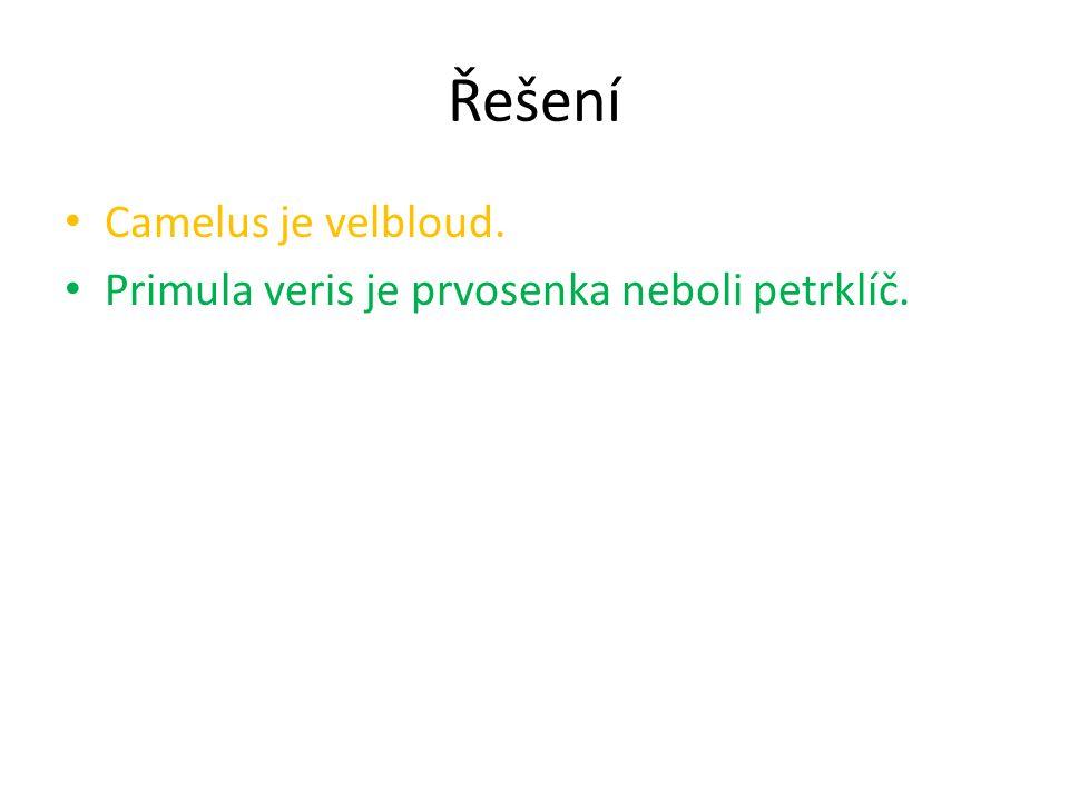 Řešení Camelus je velbloud. Primula veris je prvosenka neboli petrklíč.