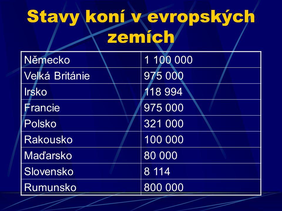 Stavy koní v evropských zemích Německo1 100 000 Velká Británie975 000 Irsko118 994 Francie975 000 Polsko321 000 Rakousko100 000 Maďarsko80 000 Slovensko8 114 Rumunsko800 000