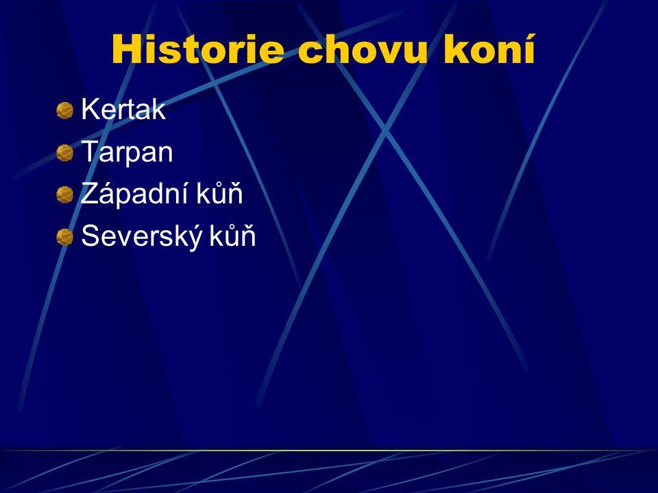 Historie chovu koní Kertak Tarpan Západní kůň Severský kůň