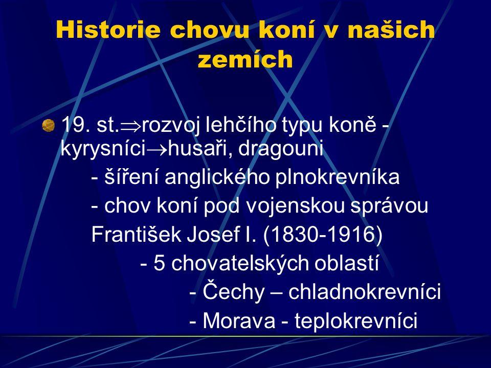 Historie chovu koní v našich zemích 20.st.