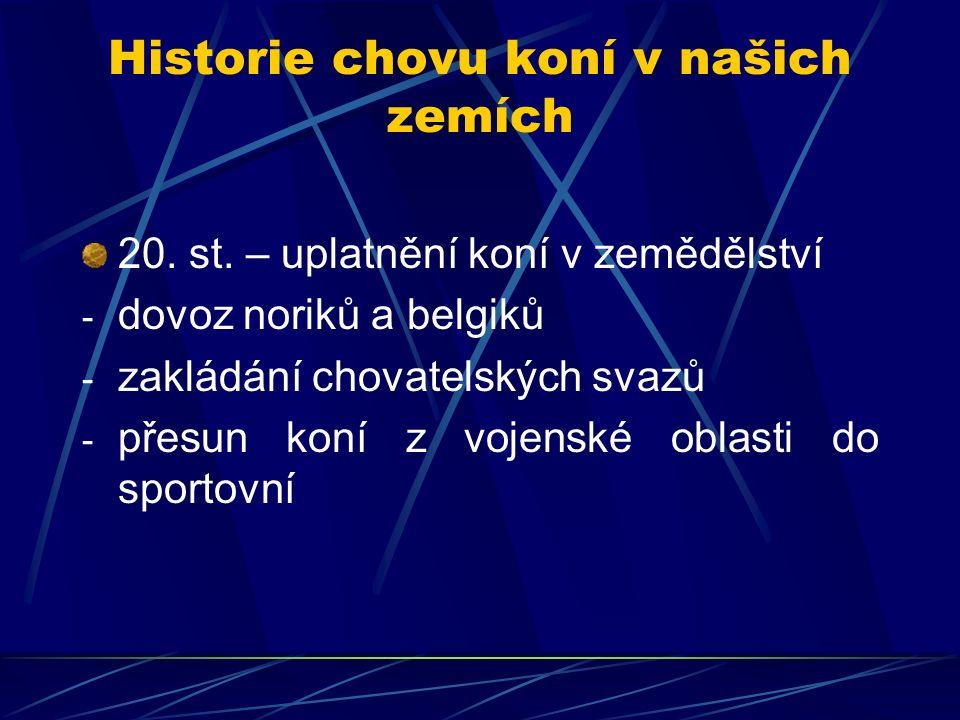 Vývoj stavů koní v ČR podle SÚ ObdobíPočet kusů 1950521 000 197444 000 199027 000 199518 000 200024 000
