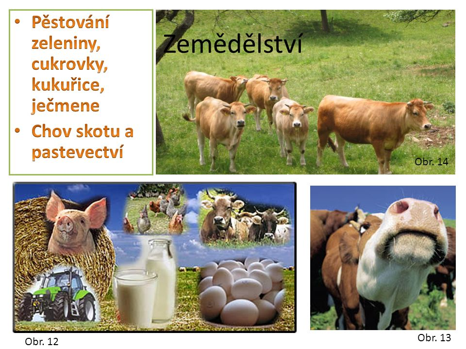Obr. 14 Zemědělství Obr. 12 Obr. 13