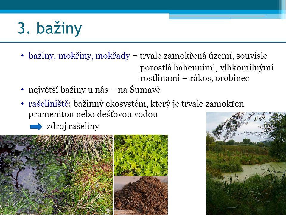 3. bažiny bažiny, mokřiny, mokřady = trvale zamokřená území, souvisle porostlá bahenními, vlhkomilnými rostlinami – rákos, orobinec největší bažiny u