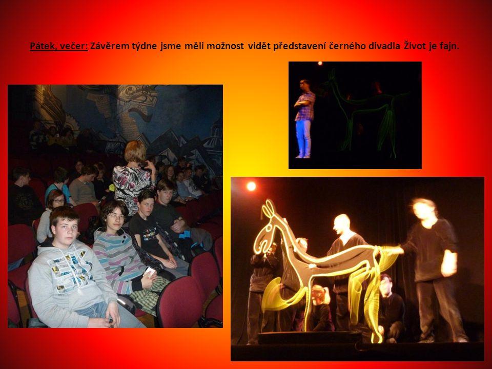 Pátek, večer: Závěrem týdne jsme měli možnost vidět představení černého divadla Život je fajn.